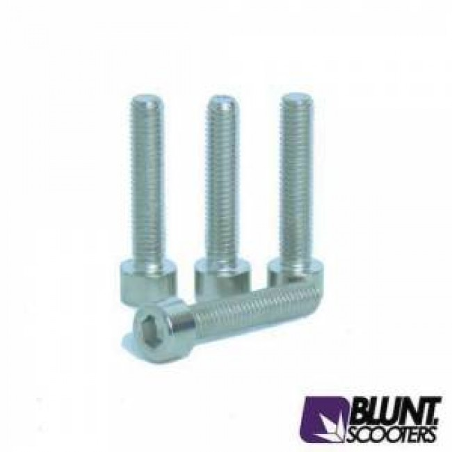Blunt Clamp Bolts 4